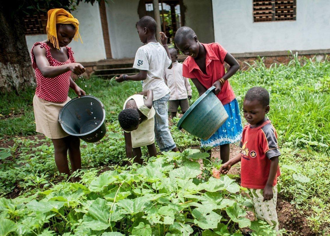 Una famiglia impegnata nella cura del proprio giardino.